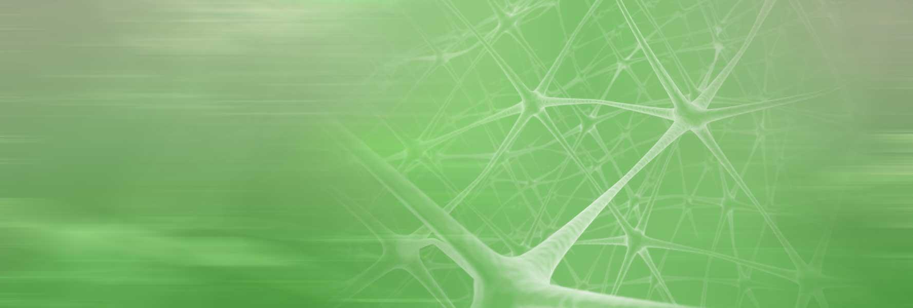1778x600_green_BLUR_v4_1573102